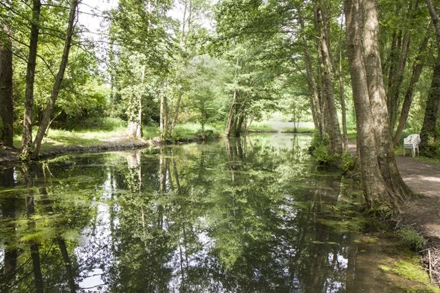 peche truite pisciculture 31